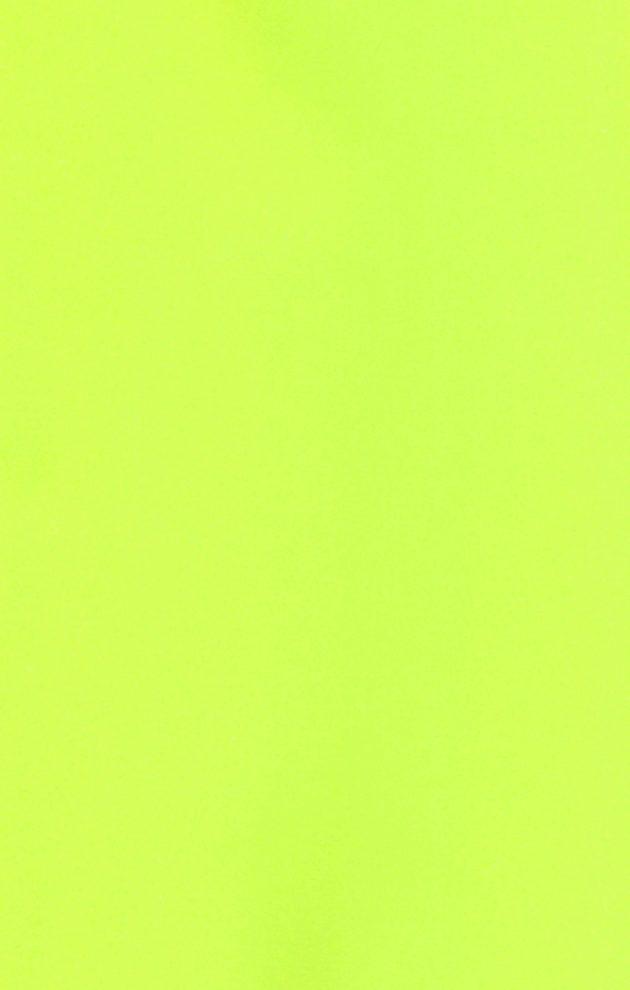 【エロ同人 リトバス】クドリャフカに犬耳とチャイナドレスを着てもらってアナルビーズの尻尾で感じさせながらラブラブエッチ!【無料 エロ漫画】 (2)